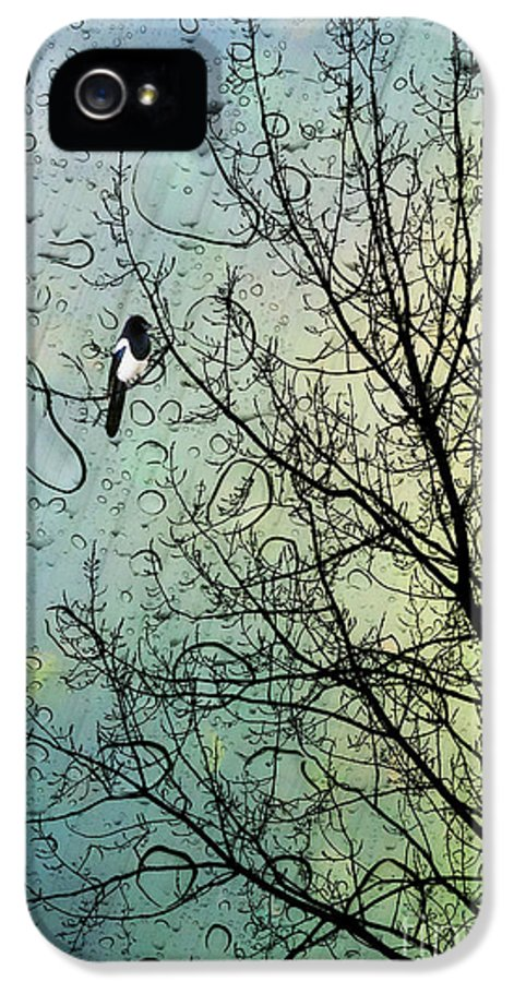 Nursery IPhone 5 Case featuring the digital art One For Sorrow by John Edwards