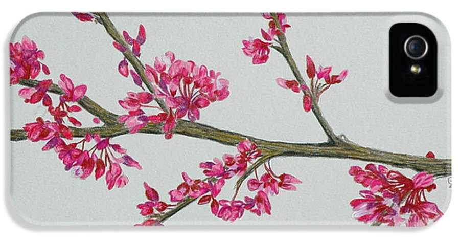 Color IPhone 5 Case featuring the drawing Plum Blossom by Glenda Zuckerman