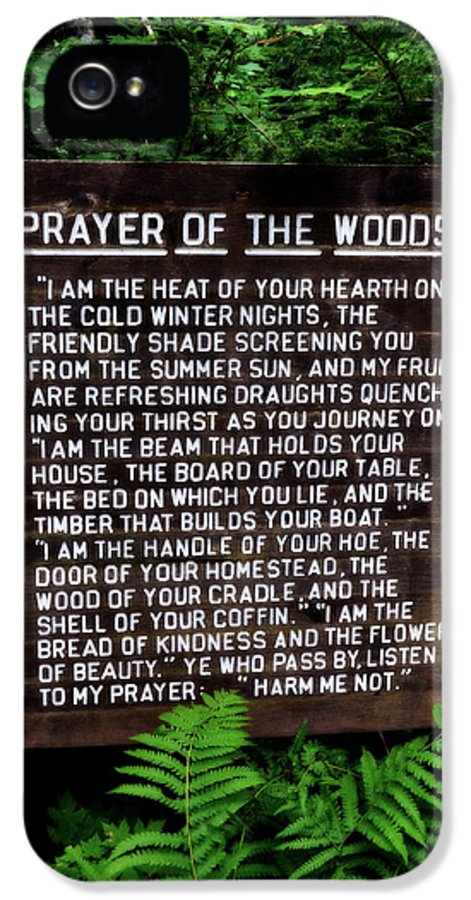 Prayer IPhone 5 Case featuring the photograph Prayer Of The Woods by Michelle Calkins