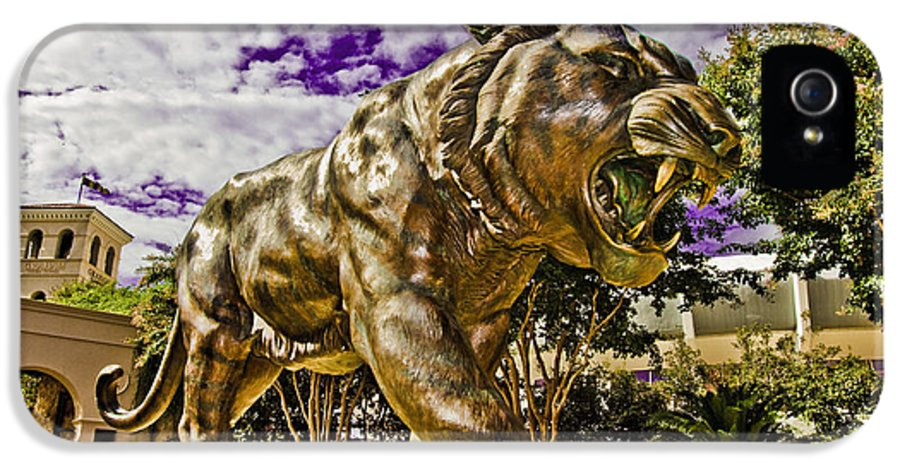 Statue IPhone 5 Case featuring the photograph Purple And Gold by Scott Pellegrin
