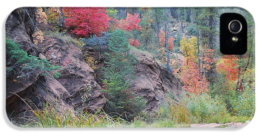 Sedona IPhone 5 Case featuring the photograph Rainbow Of The Season With River by Heather Kirk