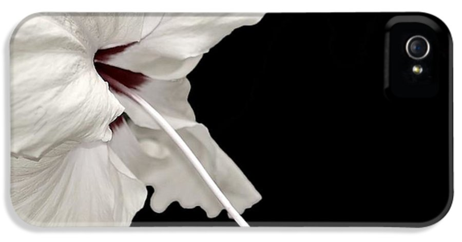 Flower IPhone 5 Case featuring the photograph Reach Out by Jacky Gerritsen