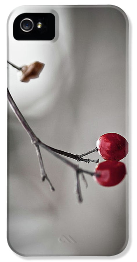 Plant IPhone 5 Case featuring the photograph Red Berries by Mandy Tabatt