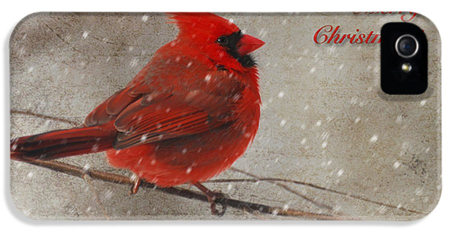 Christmas IPhone 5 Case featuring the photograph Red Bird In Snow Christmas Card by Lois Bryan