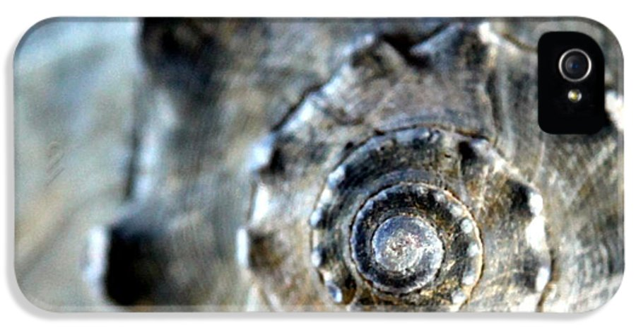 Seashells IPhone 5 Case featuring the photograph Remember The Sea With Me by Karen Wiles