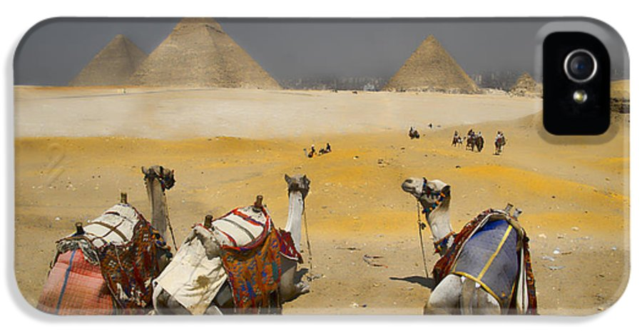 Egypt IPhone 5 Case featuring the photograph Scenic View Of The Giza Pyramids With Sitting Camels by David Smith