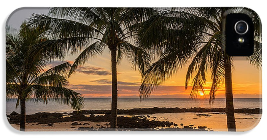 Sharks Cove Palm Tree Sunset Beach North Shore Oahu Hawaii Hi Seascape IPhone 5 Case featuring the photograph Sharks Cove Sunset 4 - Oahu Hawaii by Brian Harig