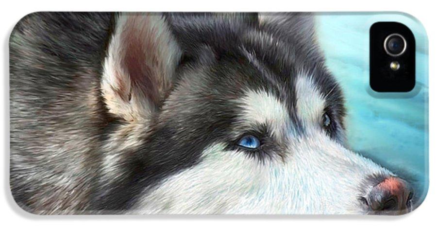 Siberian Husky IPhone 5 Case featuring the mixed media Siberian Husky by Carol Cavalaris