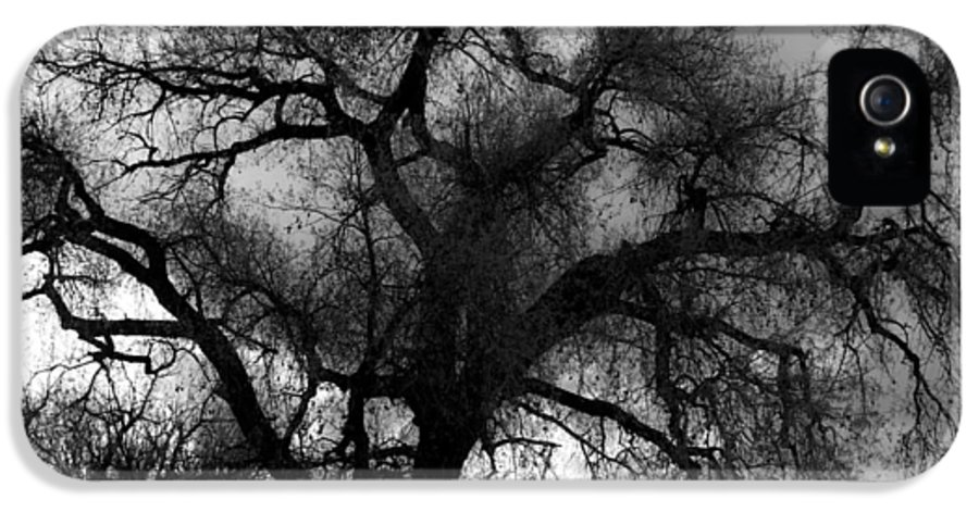 Silhouette IPhone 5 Case featuring the photograph Silhouette by James BO Insogna