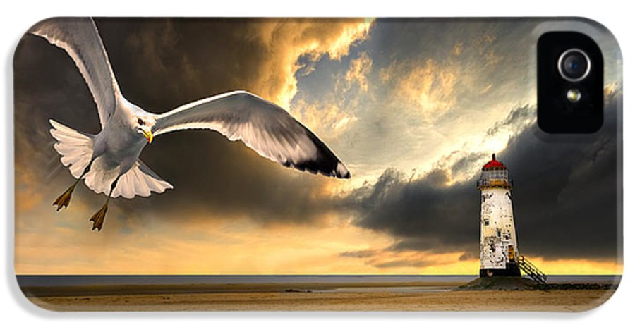 Gull IPhone 5 Case featuring the photograph Soaring Inshore by Meirion Matthias