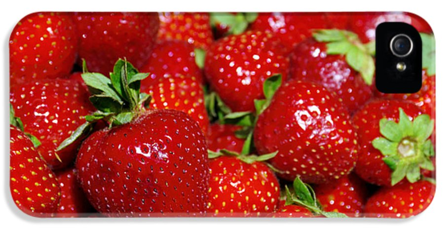 Agriculture IPhone 5 Case featuring the photograph Strawberries by Carlos Caetano