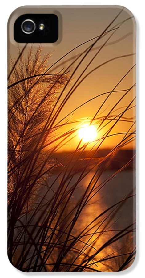 Sunset IPhone 5 Case featuring the photograph Sunset Over Lake Wylie Sc by Dustin K Ryan