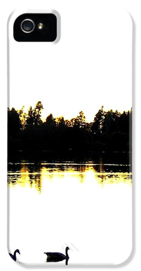Swans IPhone 5 Case featuring the photograph Swan Silhouette by Will Borden