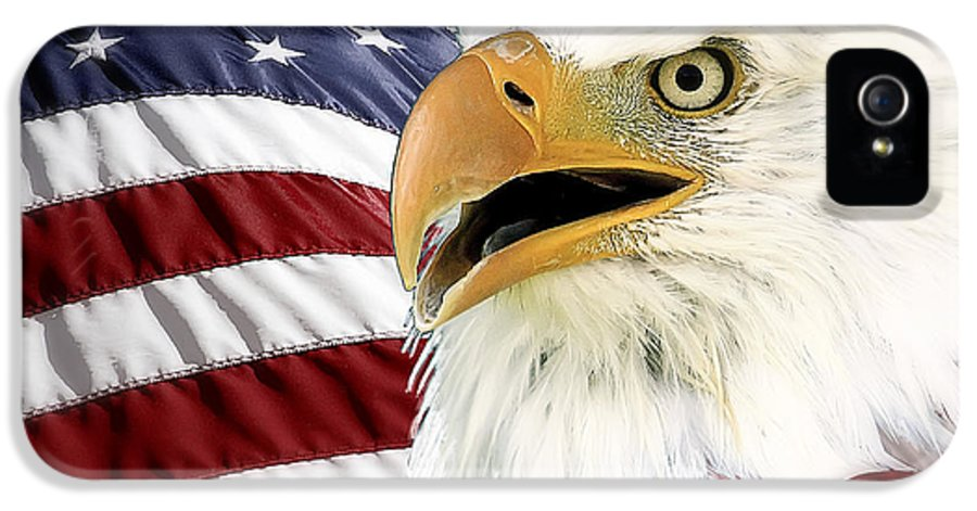 Bald Eagle IPhone 5 Case featuring the photograph Symbol Of America by Teresa Zieba