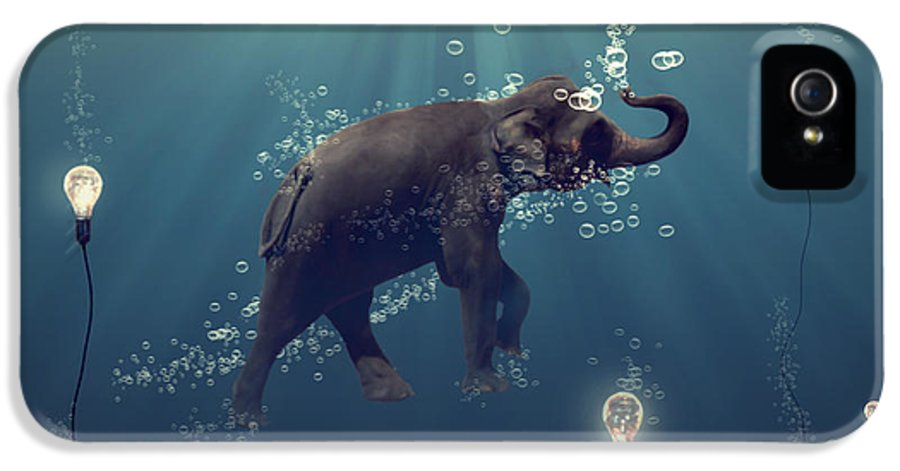 Elephant IPhone 5 Case featuring the photograph The Dreamer by Martine Roch