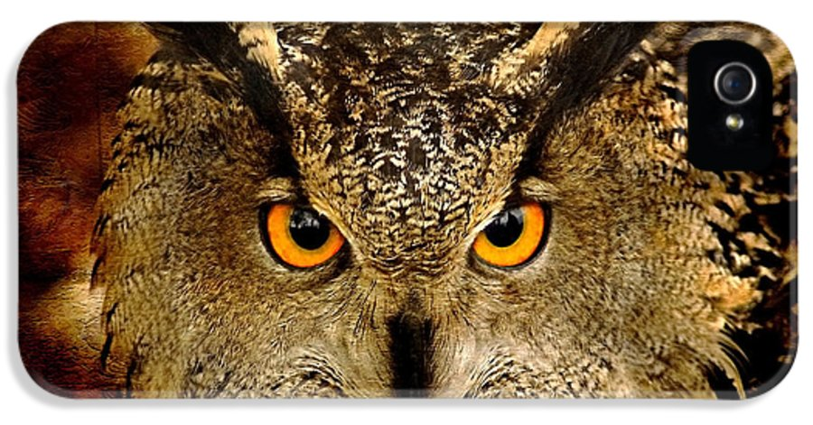 Bird IPhone 5 Case featuring the photograph The Eyes by Jacky Gerritsen