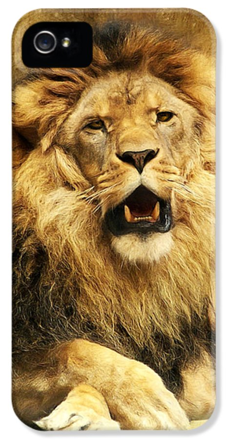 Lion IPhone 5 Case featuring the digital art The King by Angela Doelling AD DESIGN Photo and PhotoArt