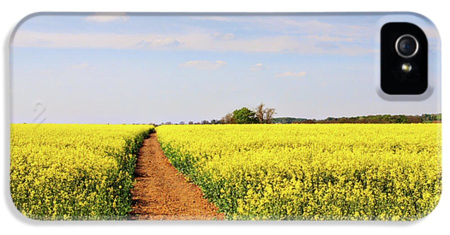 Canola IPhone 5 Case featuring the photograph The Path To Bosworth Field by John Edwards