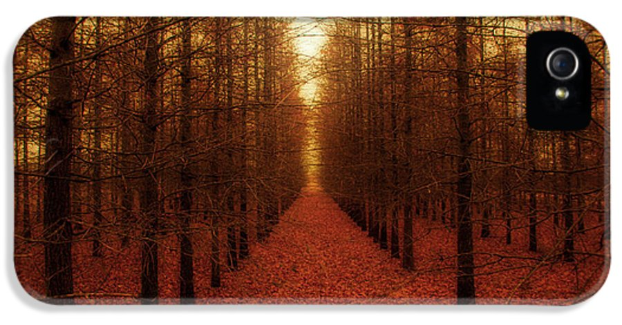 Forest IPhone 5 Case featuring the photograph The Red Forest by Amy Tyler