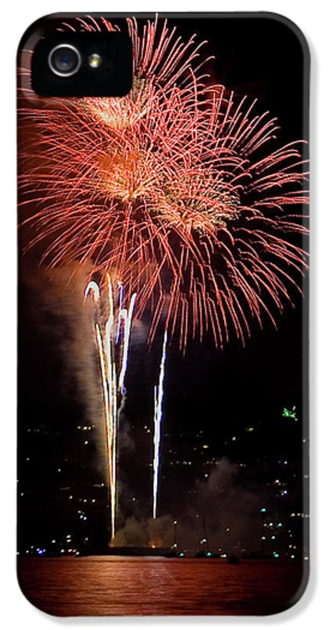 Fireworks IPhone 5 Case featuring the photograph The Three Daisies by David Patterson
