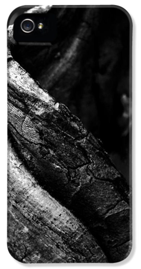 Tree IPhone 5 Case featuring the photograph Themselves Alone by Rebecca Sherman