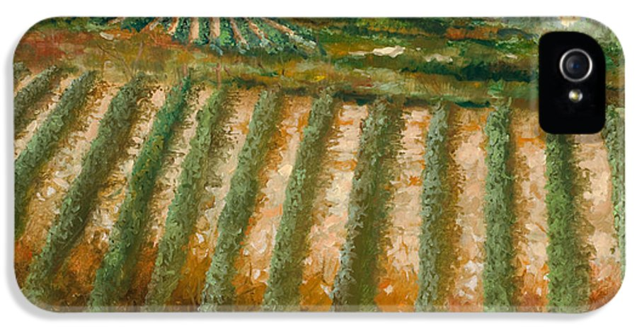 Vineyard IPhone 5 Case featuring the painting Tra I Filari Nella Vigna by Guido Borelli
