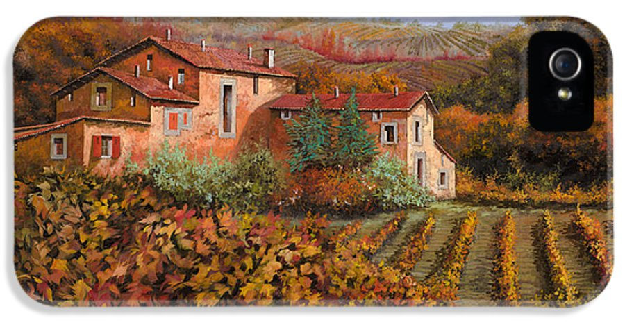 Wine IPhone 5 Case featuring the painting tra le vigne a Montalcino by Guido Borelli