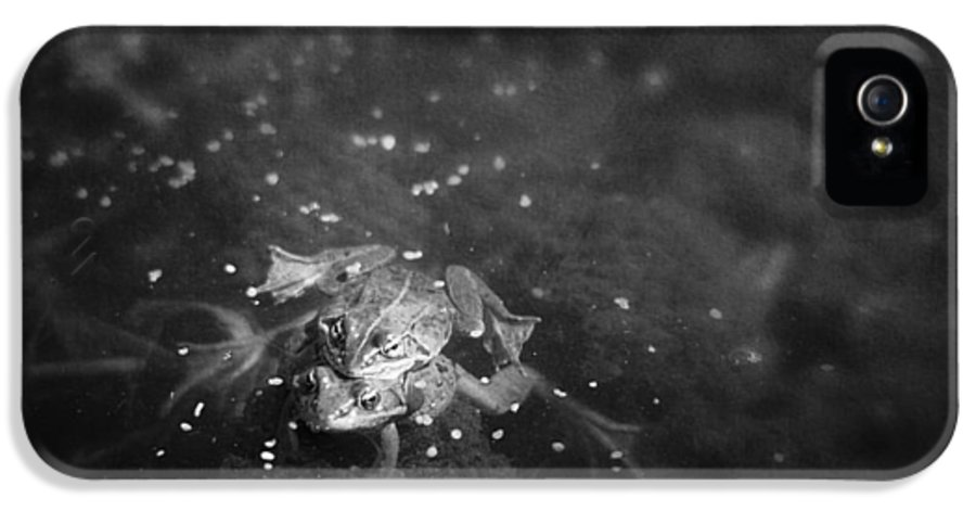 Canada IPhone 5 Case featuring the photograph Two Frogs In A Pond Mating By Laying by Roberta Murray