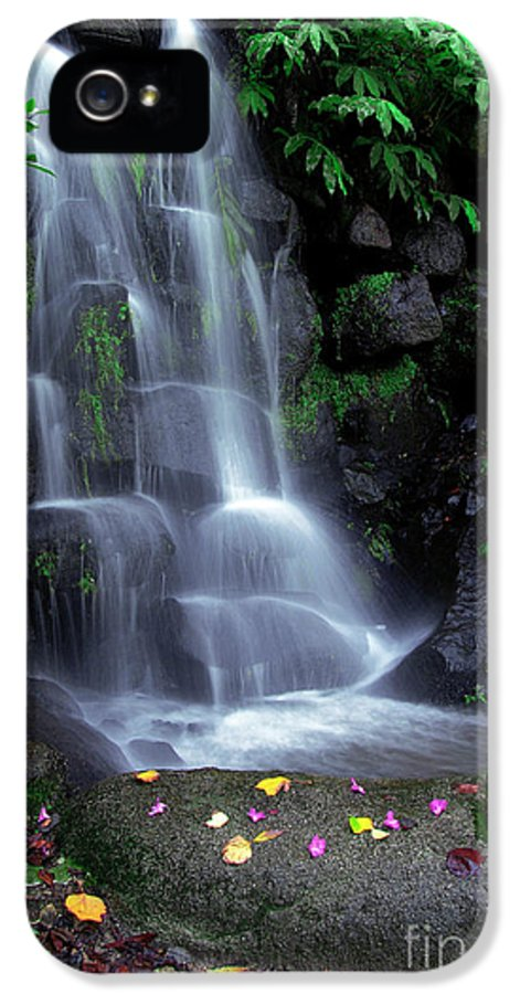 Autumn IPhone 5 Case featuring the photograph Waterfall by Carlos Caetano