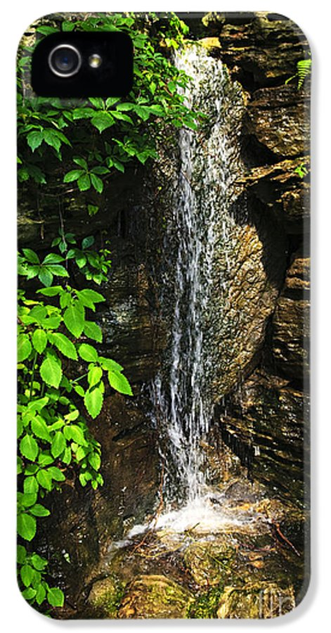 Waterfall IPhone 5 Case featuring the photograph Waterfall In Forest by Elena Elisseeva