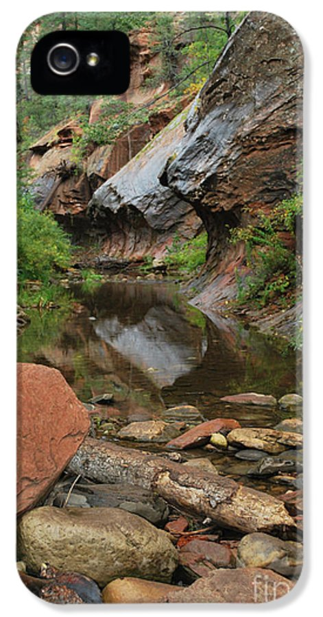 West Fork Trail River And Rock Vertical Sedona Arizona Oak Creek Canyon Wall Water Tree Bush Brush Leaf Pine Reflect Reflection IPhone 5 Case featuring the photograph West Fork Trail River And Rock Vertical by Heather Kirk