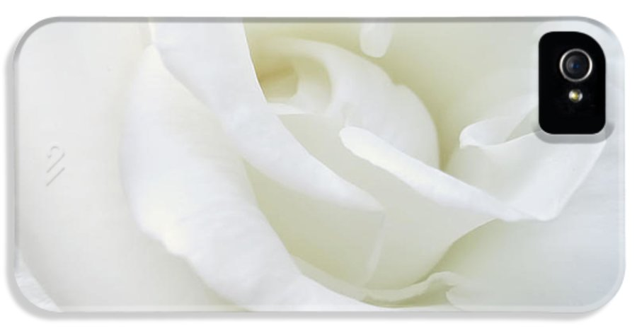 Rose IPhone 5 Case featuring the photograph White Rose Angel Wings by Jennie Marie Schell