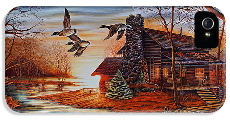 Ducks IPhone 5 Case featuring the painting Winter Getaway by Carmen Del Valle