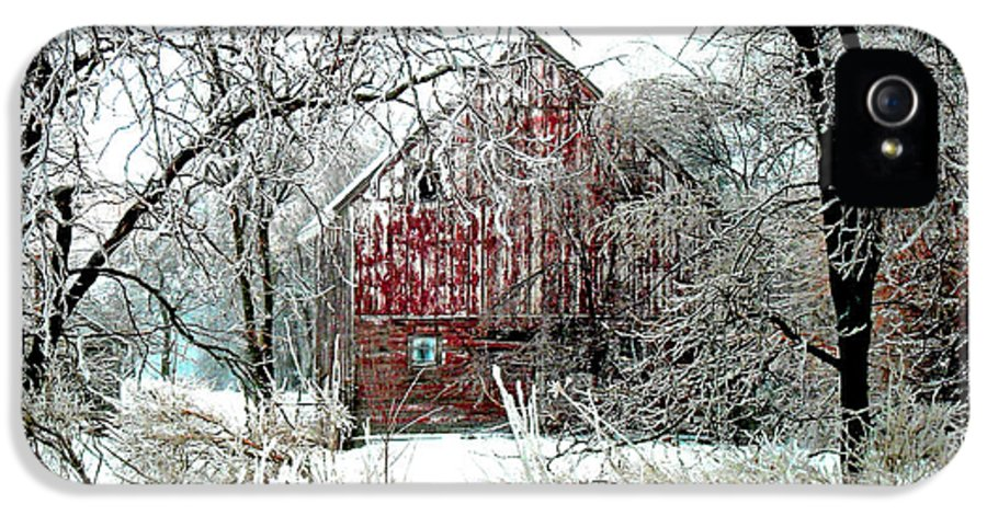Christmas IPhone 5 Case featuring the photograph Winter Wonderland by Julie Hamilton