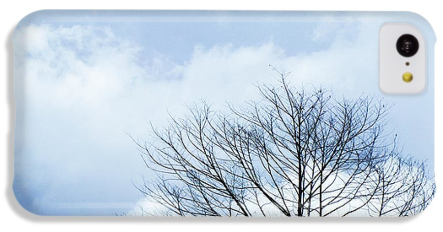 Winter Fall White Sky IPhone 5c Case featuring the photograph Winter Tree by Adelista J