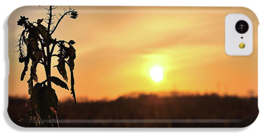 Sonnenuntergang Blume Flowwer Sky Himmel IPhone 5c Case featuring the photograph Sonnenuntergang by Scimitarable