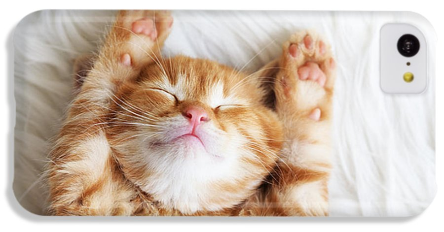 Small IPhone 5c Case featuring the photograph Cute Little Red Kitten Sleeps On Fur by Alena Ozerova