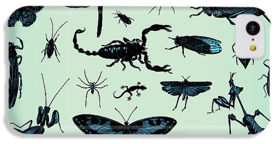 Engraving IPhone 5c Case featuring the digital art Engraving Vintage Insect Set From by Pio3