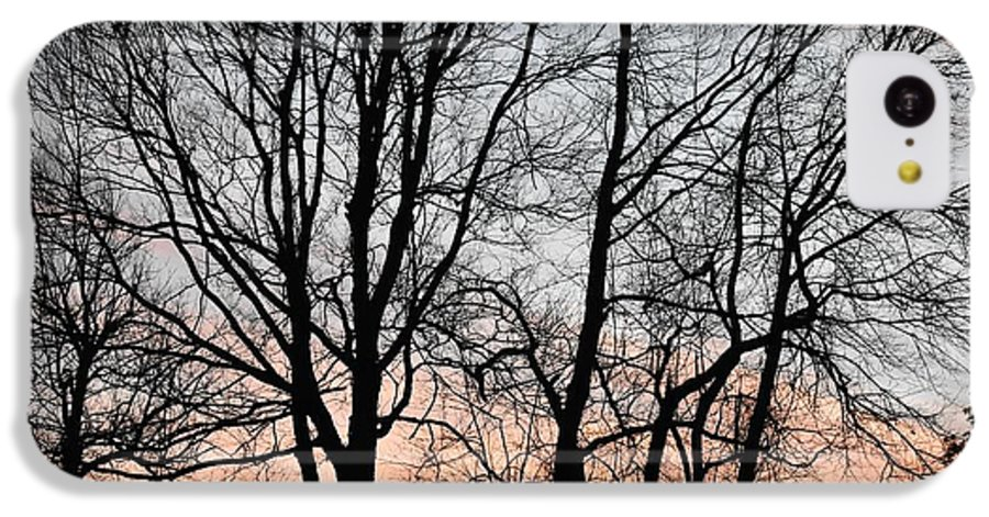 Trees IPhone 5c Case featuring the photograph Pink Sky by Cassidy Marshall