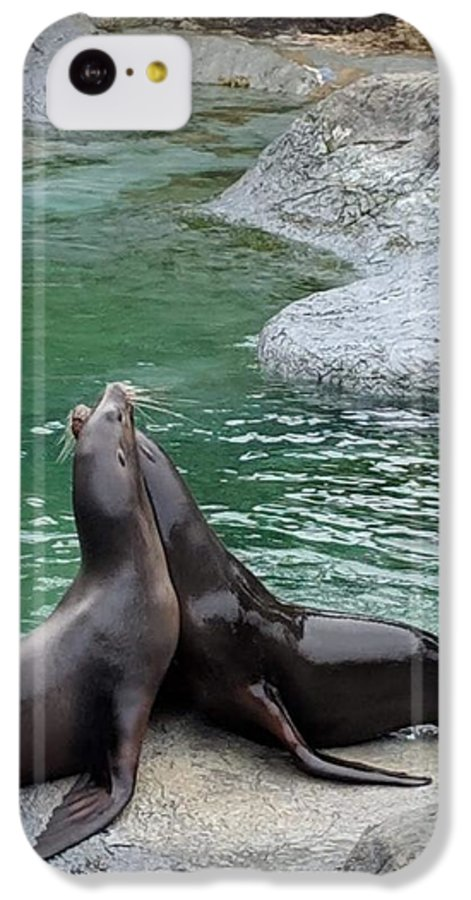 Blue IPhone 5c Case featuring the photograph Seal by Aswini Moraikat Surendran