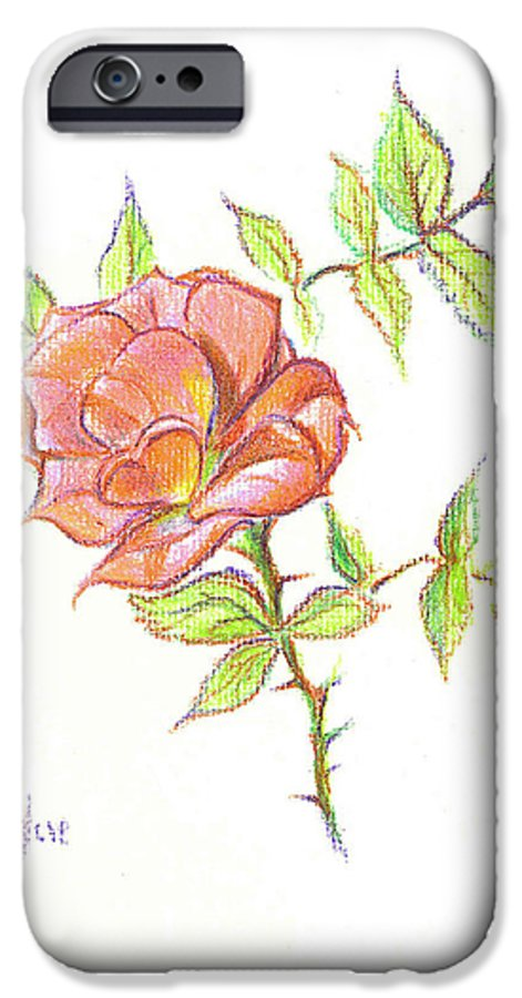 A Rose In Brigadoon IPhone 6 Case featuring the drawing A Rose In Brigadoon by Kip DeVore
