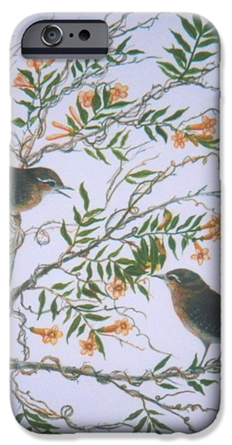 Bird; Flowers IPhone 6 Case featuring the painting Carolina Wren And Jasmine by Ben Kiger