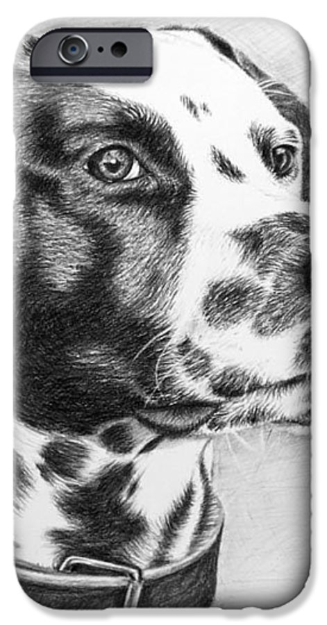 Dog IPhone 6 Case featuring the drawing Dalmatian Portrait by Nicole Zeug