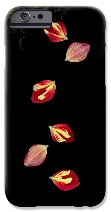 Petal IPhone 6 Case featuring the photograph Falling by Suzanne Gaff