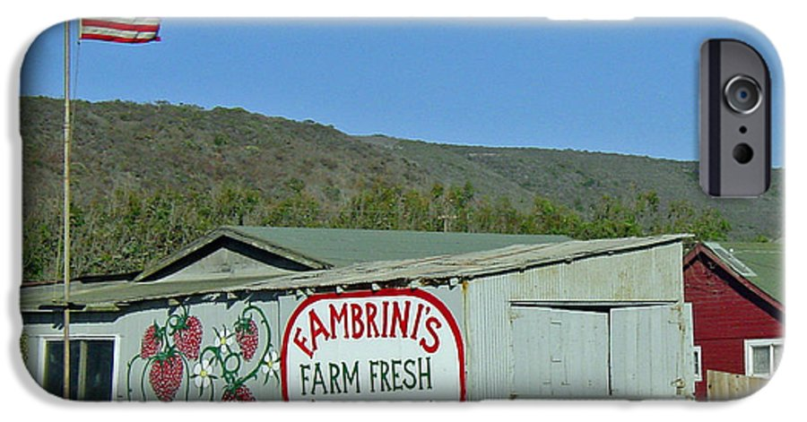 Farm Fresh Produce IPhone 6 Case featuring the photograph Fambrini's Farm Fresh Produce by Suzanne Gaff