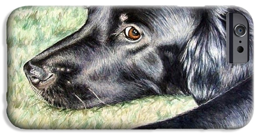 Dog IPhone 6 Case featuring the painting Flat Coated Retriever by Nicole Zeug