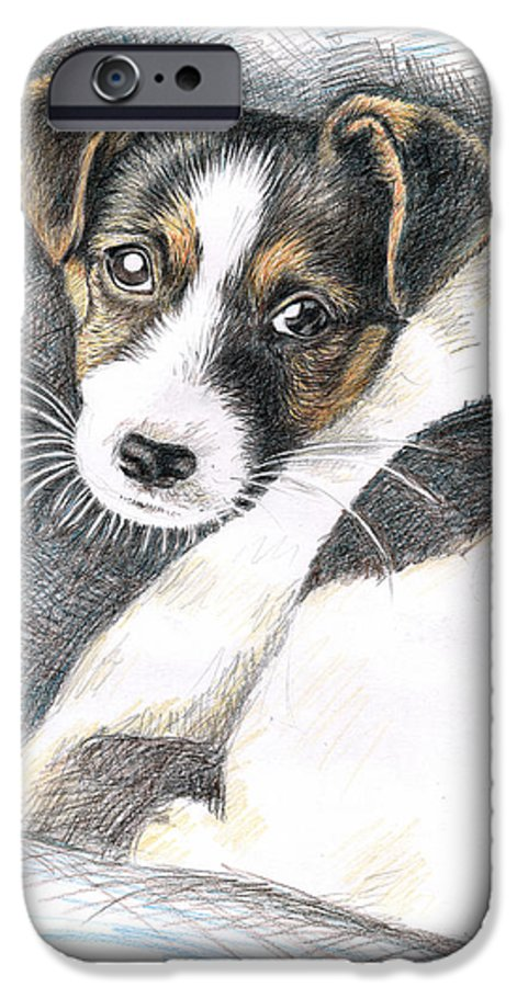 Dog IPhone 6 Case featuring the drawing Jack Russell Puppy by Nicole Zeug