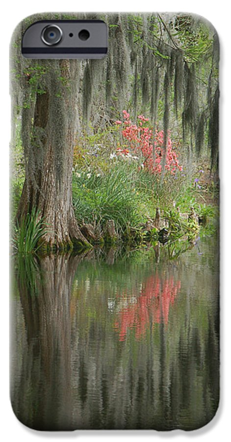 Lowcountry IPhone 6 Case featuring the photograph Lowcountry Series I by Suzanne Gaff
