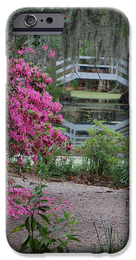 Garden IPhone 6 Case featuring the photograph Lowcountry Series II - Ode To Monet by Suzanne Gaff