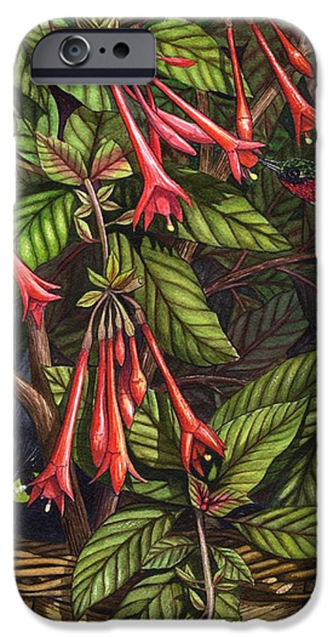 Fuchsia IPhone 6 Case featuring the painting Lurking by Catherine G McElroy